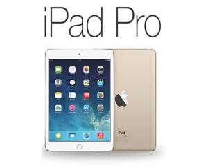 iPad Repair - iPad Pro